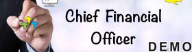 Part Time CFO Services