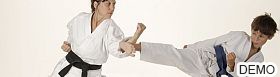 Martial Arts Services