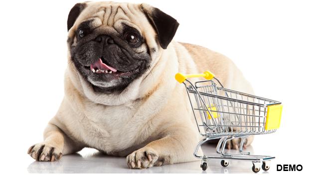 Pet Stores